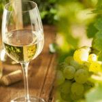 なぜワインには白ワインと赤ワインがあるの?~白ワイン編~